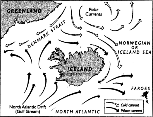 Iceland Currents